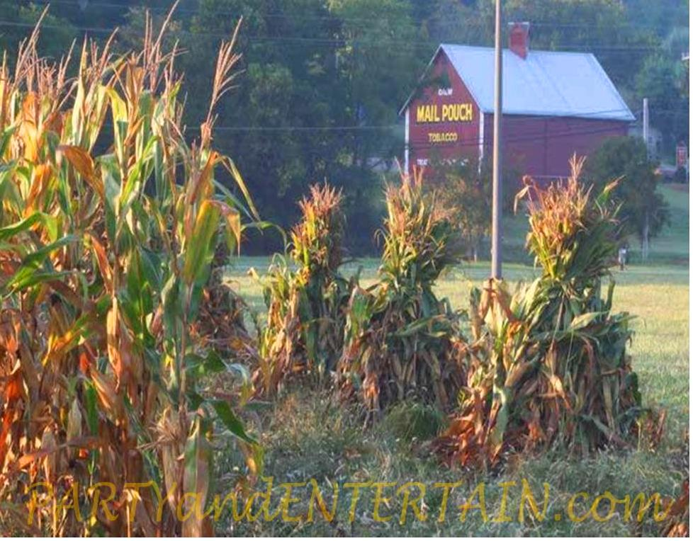 Halloween, corn shocks, fall, partyandentertain